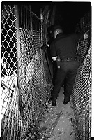 A SWAT officer searches for a man possibly hiding after a shoot out in North Philadelphia. I could not photograph during the actual gunfire as I was worried my flash would expose the cops whereabouts to the shooter