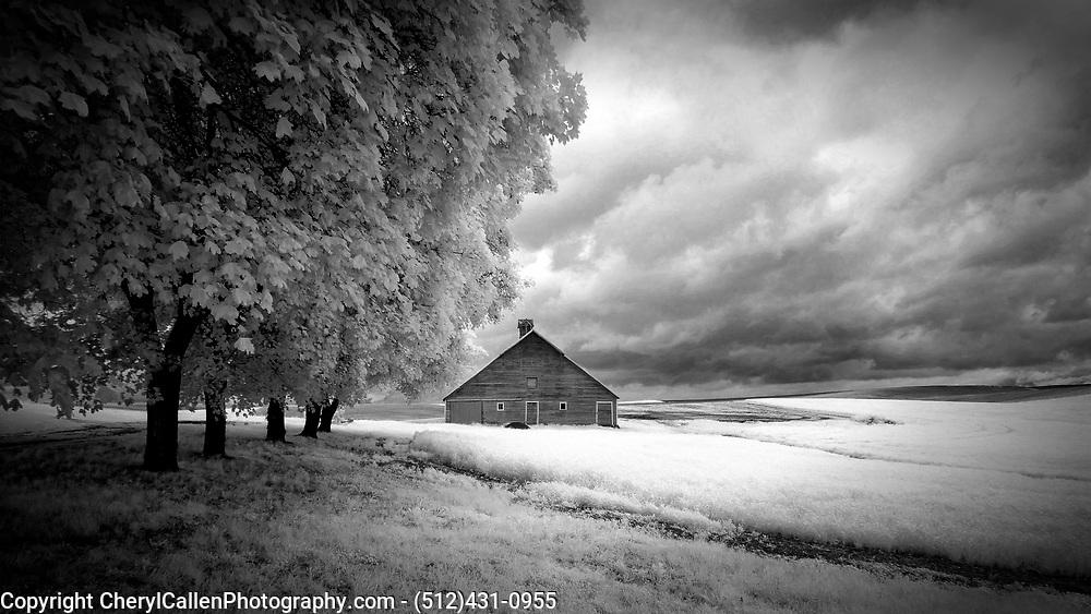 Old barn in Palouse,shot in Infrared