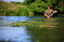 UK ENGLAND WILTSHIRE 26JUN08 - River keeper John Hounslow cuts weeds in the riverbed of the Kennet near Stichcoombe in rural Wiltshire, western England...jre/Photo by Jiri Rezac / WWF UK..© Jiri Rezac 2008..Contact: +44 (0) 7050 110 417.Mobile:  +44 (0) 7801 337 683.Office:  +44 (0) 20 8968 9635..Email:   jiri@jirirezac.com.Web:     www.jirirezac.com..© All images Jiri Rezac 2008 - All rights reserved.