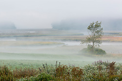 The York River winds through fog, fields, and salt marsh in York, Maine.