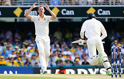 Australia's Josh Hazelwood reacts during day one of the Ashes Test match at The Gabba, Brisbane.