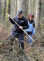 ©London News pictures. 22/03/11.  A Police Officer and volunteer search the woods together. Locals and friends of Sian O'Callaghan help Police in the search in Savernake Wood, Wiltshire, today. Detectives continue investigating the disappearance of office administrator Sian O'Callaghan. The 22-year-old disappeared after leaving Suju nightclub in Swindon at about 2.50am on Saturday to walk the half-mile home to the flat she shared with her boyfriend Kevin Reape. Picture Credit should read Stephen Simpson/LNP