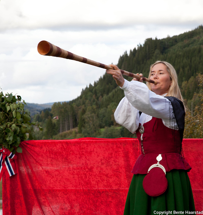Lur, a traditional norwgian instrument. Originally used to collect the cattle from the fields.