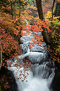 "Ryuzu Waterfall (Ryuzu no Taki, ""dragon head waterfall"") on Yukawa River near its discharge into Lake Chuzenji, in Nikko National Park, Tochigi Prefecture, Japan. Autumn foliage colors typically peak here in early October, but we saw good colors on October 23, 2018. Follow the river upstream for 300 meters for more views of the rushing river, then catch the bus, or continue on the trail towards Senjogahara Marshlands."