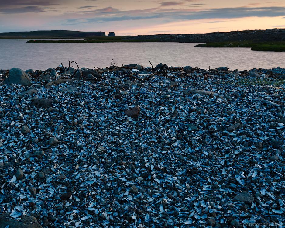 Shells at Skeljalón lagoon, Melrakkaslétta, Northeast Iceland. Viewing west towards Rauðinúpur.