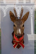 "VENICE, ITALY..50th Biennale of Venice.Palazzo Zorzi, Pavillion of Bosnia-Hercegovina..""Deer with Red Necktie"" by Jusuf Hadzifejzovic, 2003..(Photo by Heimo Aga)"