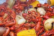 Crawfish party during Mardi Gras weekend at the home of Scott and Beth Galante