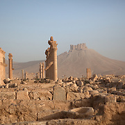 Ruins of Roman columns at Palmyra, Syria