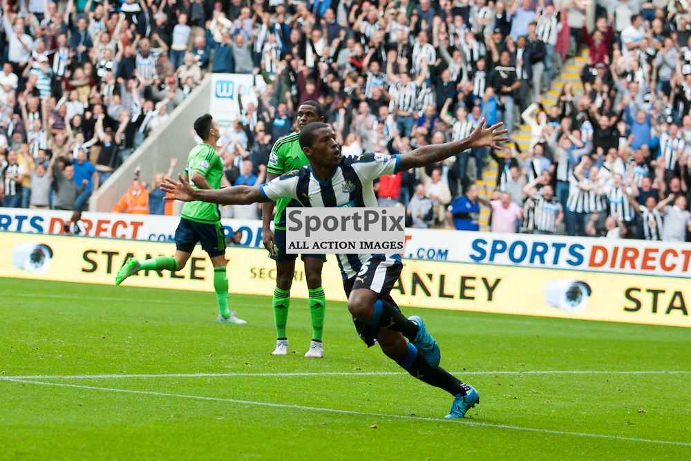 Georginio Wijnaldum scoring a goal for Newcastle in the Newcastle United v Southampton Barclays Premier League match at St James' Park Newcastle 09 August 2015<br />