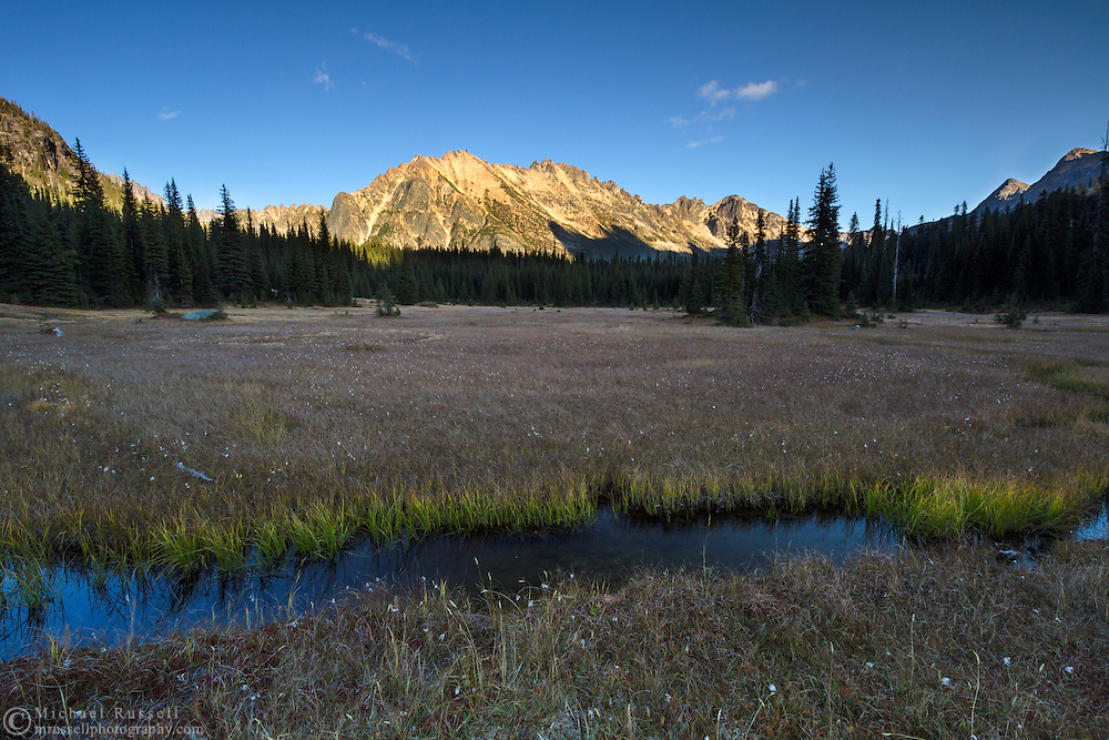 A small stream runs through the meadows at Washington Pass in the North Cascades of the Okanogan-Wenatchee National Forest in Washington State, USA.