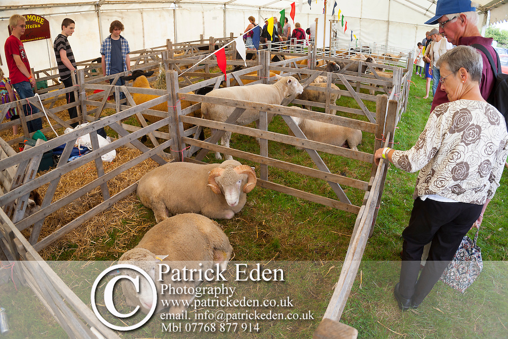 Agricultural Show, Northwood, Isle of Wight, England, UK photography photograph canvas canvases
