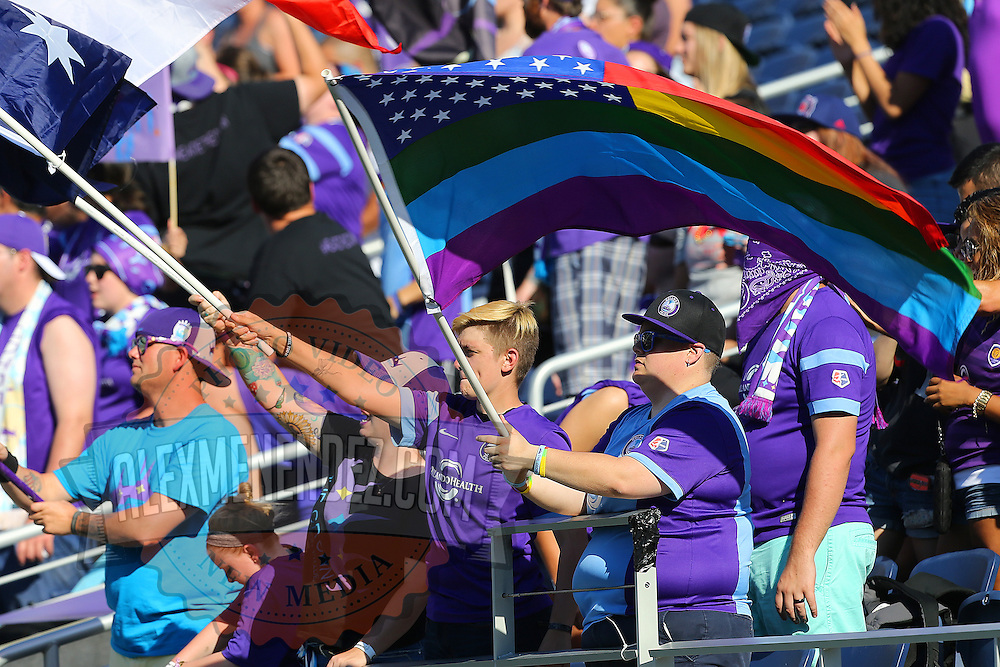 Fans of the Orlando Pride celebrate during a NWSL soccer match at Camping World Stadium on May 8, 2016 in Orlando, Florida. (Alex Menendez via AP)