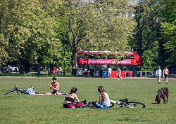 © Licensed to London News Pictures. 24/04/2020. London, UK. Members of the public enjoy the warm weather on Clapham Common as Londoners go out in the sunshine during lockdown were temperatures are expected to reach 22c over the weekend. London has seen an increase in traffic and busier High Streets as more shops and takeaway restaurants start to open up during the coronavirus pandemic crisis. Photo credit: Alex Lentati/LNP