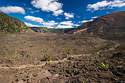 Hikers on the Kilauea Iki trail in the caldera, Hawaii Volcanoes National Park, Hawaii USA