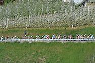 39° Giro del Trentino Melinda, 4° tappa Malè Cles, 24 aprile 2015 © foto Daniele Mosna