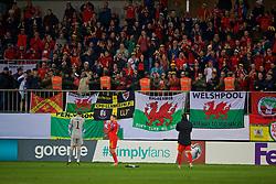 BAKU, AZERBAIJAN - Saturday, November 16, 2019: Wales supporters celebrate after the UEFA Euro 2020 Qualifying Group E match between Azerbaijan and Wales at the Bakcell Arena. Wales won 2-0. (Pic by David Rawcliffe/Propaganda)