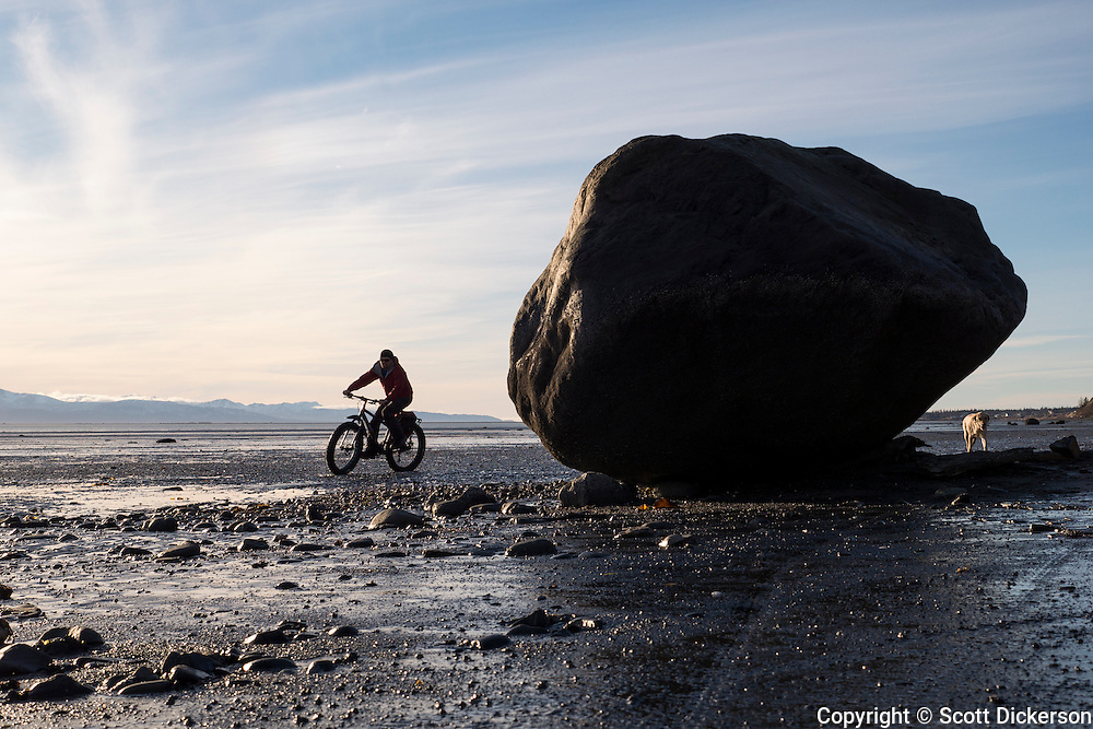 Carl Seger rides his fat tire bike on the beach at the edge of Kachemak Bay near Homer, Alaska during an unseasonably warm winter day.