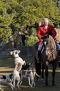 Huntsman Willie Dunn and his hounds during the annual blessing marking the start of the Fox Hunting season at Middleton Place Plantation November 27, 2016 in Charleston, SC. Fox hunting in Charleston is a drag hunt using a scented cloth to simulate a fox and no animals are injured.