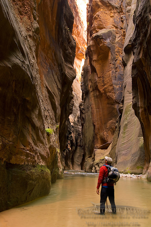Hiker in the Virgin River Narrows, Zion National Park, Utah