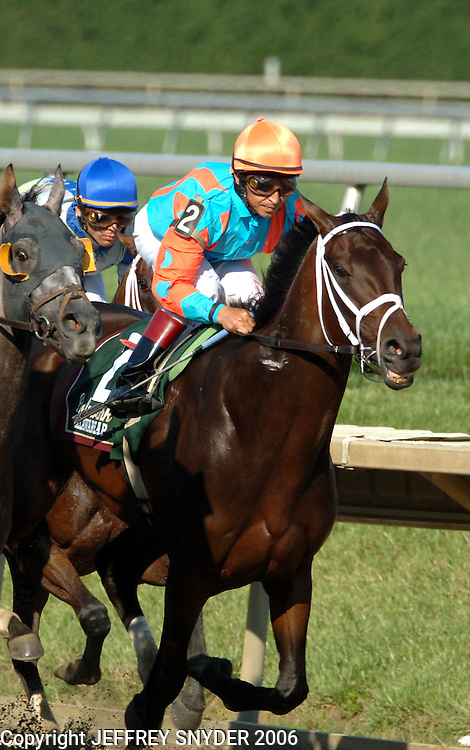 Fleet Indian with jockey Jose Santos, won the 2006 Delaware Handicap