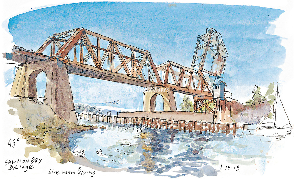The historic Salmon Bay Bridge sketched from commodore park near the Ballard Locks.  Blue Herons standby looking for fish. <br />