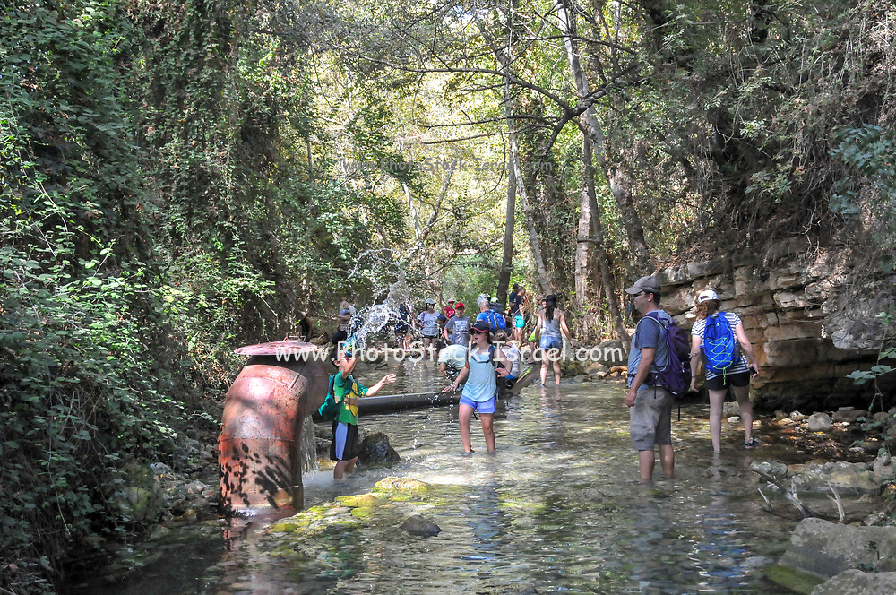 Hiking along the Kziv stream, upper Galilee, Israel