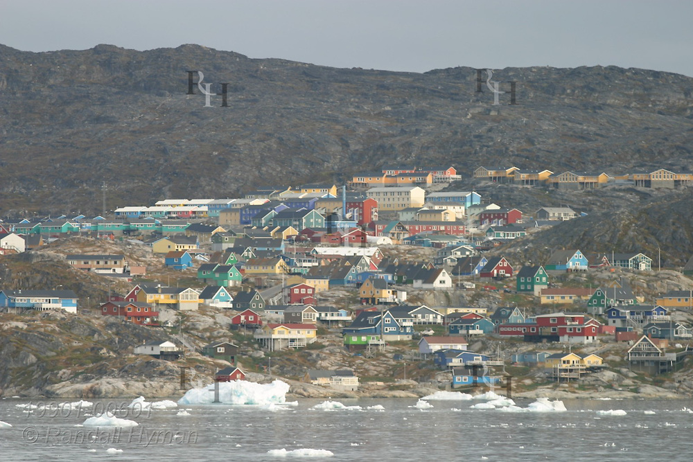 Colorfully painted homes and buildings climb steep rocky shore overlooking Disko Bay iceberg chunks in late summer at Ilulissat, third largest town in Greenland.