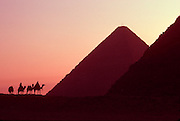EGYPT, ANCIENT MONUMENTS Giza Pyramids and camel caravan