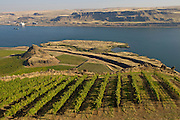 Maryhill Winery, Washington
