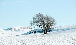 The snow had taken West Lothian by surprise on Christmas night.<br /><br />(c) Alex Todd   Edinburgh Elite media
