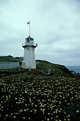CA: Montara, California, lighthouse 2005 .Image: camontara105..Photo Copyright: Lee Foster, lee@fostertravel.com, www.fostertravel.com, (510) 549-2202.