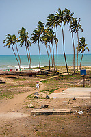 Palm Trees & Basketball Court, Elmina Castle Grounds