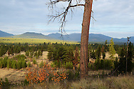 Overlooking the North Fork Flathead River Valley in fall from Glacier National Park, northwest Montana.