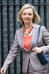Downing Street, London, December 1st 2015. Secretary of State for Environment, Food and Rural Affairs Liz Truss arrives at Downing Street for the weekly cabinet meeting. ///FOR LICENCING CONTACT: paul@pauldaveycreative.co.uk TEL:+44 (0) 7966 016 296 or +44 (0) 20 8969 6875. ©2015 Paul R Davey. All rights reserved.