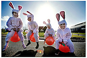 Easter Bunnies from Mossneuk Primary School in East Kilbride bounce around at the National Museum of Rural Life at nearby Kittochside in preparation for the Museum's forthcoming Easter Fun Day this Sunday 23 March. The attraction will be hosting activities ranging from an Easter trail and craft workshop to an appearance by the Easter Bunny.<br /> <br /> Pictured are 6 year-old pupils: Robeena Mohammed, Rachel Howie, Ross Taylor and Sam Neilly