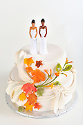 In support of gay marriage, marriage equality, lesbian Interracial Couple on top of white Wedding Cake with brightly-colored fall leaves and copy space