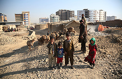 November 20, 2018 - Kabul, Afghanistan -  Afghan children stand outside their mud houses on World Children's Day in Kabul, capital of Afghanistan, Nov. 20, 2018. The United Nations Children's Fund (UNICEF) office in Afghanistan said on Monday that about 3.7 million Afghan children have no access to school due to insecurity and poverty in the country. (Credit Image: © Rahmat Alizadah/Xinhua via ZUMA Wire)