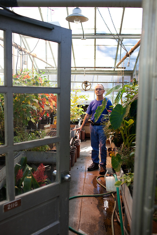 Greenhouse manager Harold Blazier poses for a portrait in the Ohio University Greenhouse in Athens, Ohio on Thursday, October 11, 2012. Photo by Chris Franz