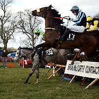 Kevin Power and On Gossamer Wings manage to stay up at the Dromoland Point to Point on Sunday.<br />