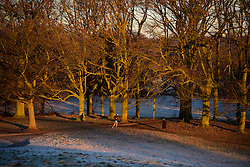© Licensed to London News Pictures. 29/12/2016. London, UK. A man jogs through woodland at sunrise on Parliament Hill on Hampstead Heath, Hampstead, North London on another cold winter morning. Most of the UK has woken to freezing temperatures. Photo credit: Ben Cawthra/LNP