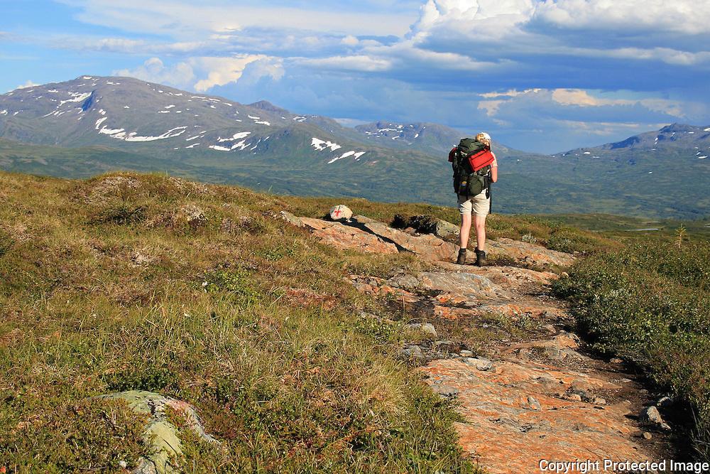 På veg til Schulzhytta fra Hersjøen i Selbu. Fongen. Høgfjellet passeres. Skarvene og Roltdalen nasjonalpark. Foto: Bente Haarstad