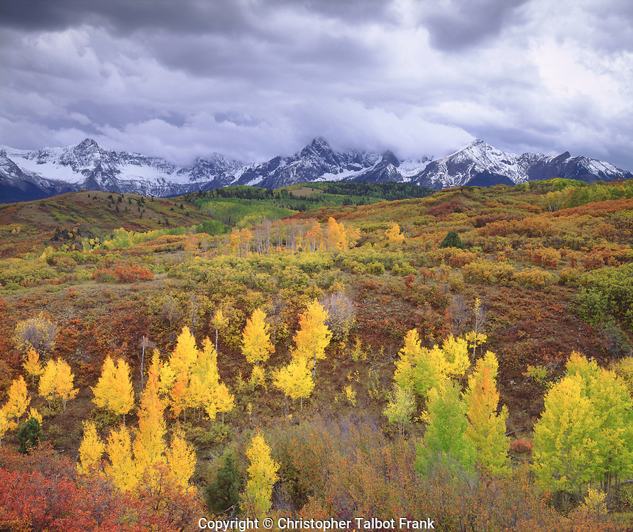 I waited for a winter storm to take my photo of autumn in the San Juan Mountains.  The colorful aspen forest contrasts against the fresh mountain snow.