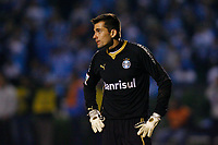 20090702: PORTO ALEGRE, BRAZIL - Gremio vs Cruzeiro: Copa Libertadores 2009 - Semi Finals - 2nd Leg. In picture: Victor (Gremio goalkeeper). PHOTO: CITYFILES