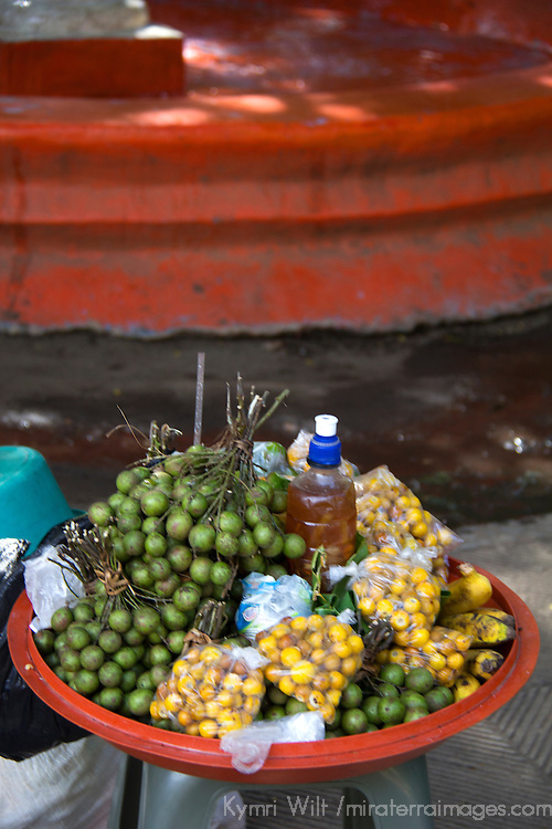 Central America, Nicaragua, Granada. Jocote Fruit of Nicaragua.
