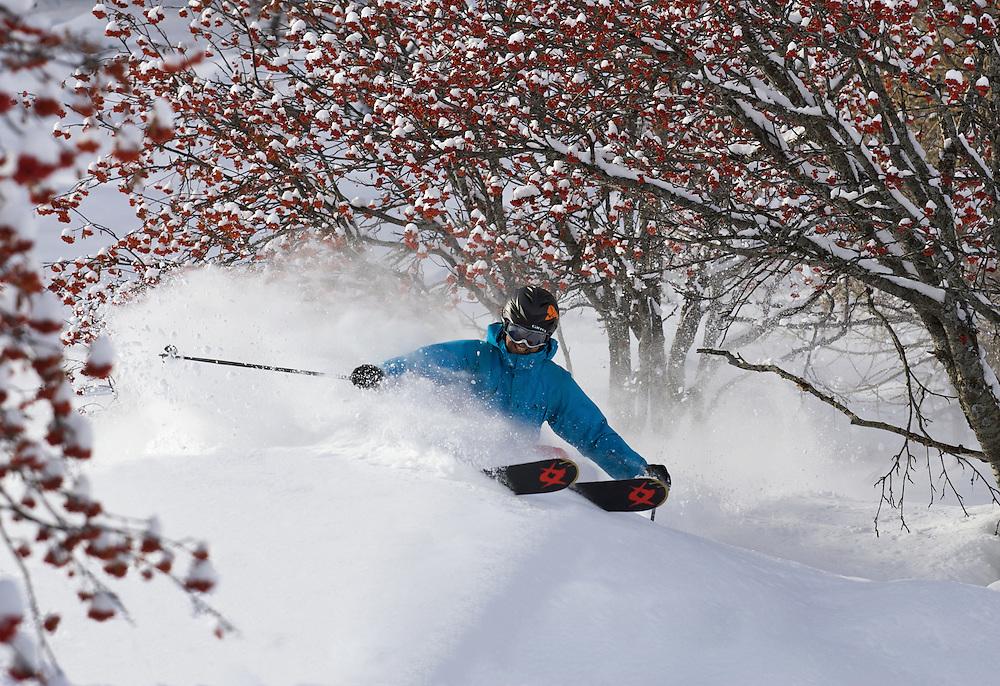 Skiing, Serre Chevalier, France
