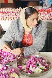 Asian woman making garlands for the Baisakhi festival,