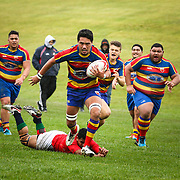 Tawa v MSP (Colts) - 30 July 2016