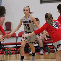 Women's Basketball: DeSales University Bulldogs vs. Amherst College Mammouths