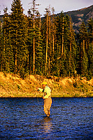 Fly fishing, West Glacier, Montana USA