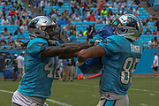 Carolina Panthers tight end Temarrick Hemingway (46), tight end Marcus Baugh (85) doing practice drills during Fan Fest at Bank of America Stadium, Friday, Aug. 2, 2019, in Charlotte, NC. (Brian Villanueva/Image of Sport)